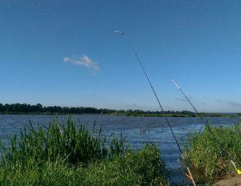 Nocne zawody gruntowe 2020 – Rzeka Bug Kania Polska